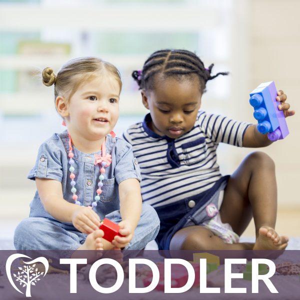 Toddler Membership Lynchburg Dental Plan